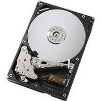 "IBM - Hard drive - 300 GB - hot-swap - 2.5"" - SAS-2 - 10000 rpm"